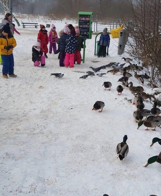 Przedszkolaki podczas spaceru do parku, bezpiecznie i mądrze dokarmiają ptaki w czasie zimy.